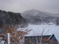20101209_018