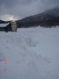 20110129_018